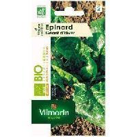 Graine - Semence Epinard geant d'hiver bo