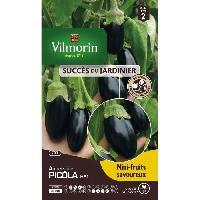 Graine - Semence Graines d' aubergine picola