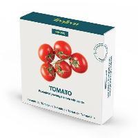 Graine - Semence TREGEN Kit tomates cerises - Pour potager d'interieur