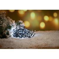 Guirlande Electrique Lumineuse D Exterieur Guirlande de Noël 100 micro-LED - 6 m - Blanc froid - Generique