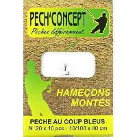 HameÇon PECH'CONCEPT Carnet de 10 Hamecons Montes No20