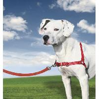 Harnais Animal EASY WALK Harnais M - Rouge - Pour chien Easywalk