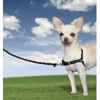 Harnais Animal EASY WALK Harnais XS - Noir - Pour chien - Easywalk