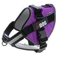 Harnais Animal I DOG Harnais Néocity - Taille S - Violet et gris - Pour chien
