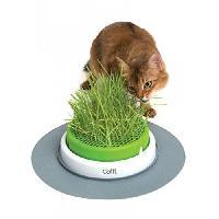 Hygiene Litiere Dejections Jardin Herbe Pour Chat Catit Senses 2.0 Cat It