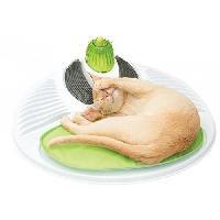 Hygiene Litiere Dejections Station De Massage Pour Chat Catit Senses 2.0 Cat It