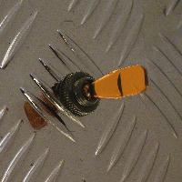 Interrupteurs Interrupteur -OnOff-. 12V 20A -orange-