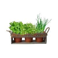 Jardinage - Brouette MGM Jardiniere en bois avec 3 pots en bamboo