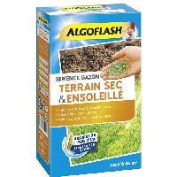Jardinage ALGOFLASH Semences gazon terrain sec et ensoleille - 1 Kg