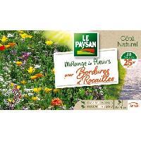 Jardinage LE PAYSAN Mélange de fleurs pour bordures et rocailles - 15 a 30 cm Aucune