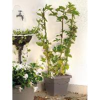 Jardiniere - Pot De Fleur - Cache-pot DEROMA Pot de fleur carre Circeo - 32 x 32 x H 27.8 cm - 14.4 L - Taupe