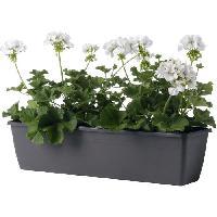 Jardiniere - Pot De Fleur - Cache-pot FDEROMA Jardiniere Miramare - 40x17x14.5 cm - 6L - Anthracite