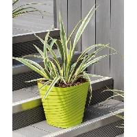 Jardiniere - Pot De Fleur - Cache-pot FDEROMA Pot Slinky - 30x30x30 cm- 17.6L - Vert