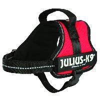 Kit Attache - Sellerie Harnais Power Julius-K9 - Mini-Mini - S - 40-53 cm-22 mm - Rouge - Pour chien - Julius K9