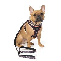 Laisse - Sangle - Accouple FUZZYARD Laisse néoprene Fabmingo L - 140 x 2.5cm - Pour chien