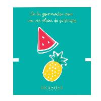 Loisirs Creatifs - Beaux Arts - Papeterie Broche Ananas et Pasteque brodees