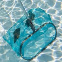 Materiel Entretien Manuel SPOOL Epuisette de surface luxe avec raclette - Avec manche