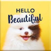 Objet De Decoration - Bibelot Magnet Hello Beautiful - Draeger