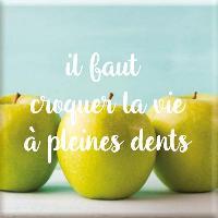 Objet De Decoration - Bibelot Magnet il faut croquer la vie a pleine dents - Draeger