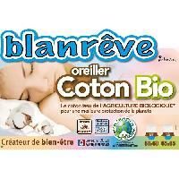 Oreiller BLANREVE Oreiller 100% coton BIO 60x60