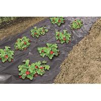 Paillage - Voile - Protection Culture Film de paillage spécial fraises - 1.40x20m - Nature