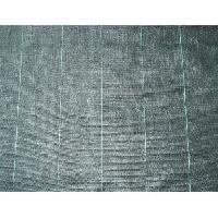 Paillage - Voile - Protection Culture NATURE Toile de paillage 100 g/m² - 2 x 5 m