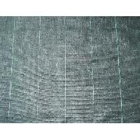 Paillage - Voile - Protection Culture Toile de paillage 100 gm2 - 2 x 5 m