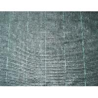 Paillage - Voile - Protection Culture Toile de paillage paysages - PP tisse noir 5.2 X 5m