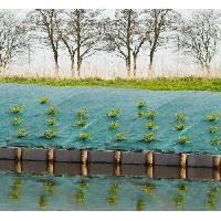 Paillage - Voile - Protection Culture Toile de paillage paysages - vert 90 gr/m² - 1x10m - Nature