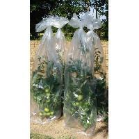 Paillage - Voile - Protection Culture VILMORIN Housse de croissance tomates en polyéthylene - Epaisseur 50 µm - 0.60 x 10 m