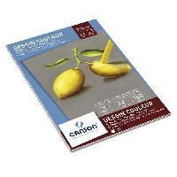 Papier - Cahier - Carnet CANSON Bloc Couleur A4 12 Feuilles