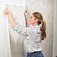 Papier Peint - Revetement Mural (fibre De Verre - Frise - Revetement Adhesif) Papier peint adhesif Confettis - 5 x 0.53 metre Aucune