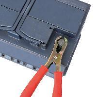 Pince Auto Pinces pour batterie 120A 2pcs - ADNAuto
