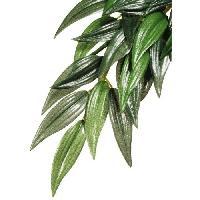 Plante D'aquarium - Vivarium - Terrarium - Decoration Vegetale - Substrat - Racine - Bois Decoration abutilon plante grand modele