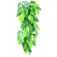 Plante D'aquarium - Vivarium - Terrarium - Decoration Vegetale - Substrat - Racine - Bois Plante en soie Ficus 20 x 30 cm pour reptile