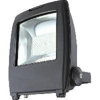 Projecteur Exterieur Projecteur exterieur aluminium fonte gris - Plastique noir - Verre translucide