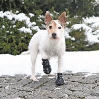 Protection Des Pattes -guetres - Chaussures - Chaussettes TRIXIE Bottes de protection Walker Active 2 pieces XS - S - Noir - Pour chien