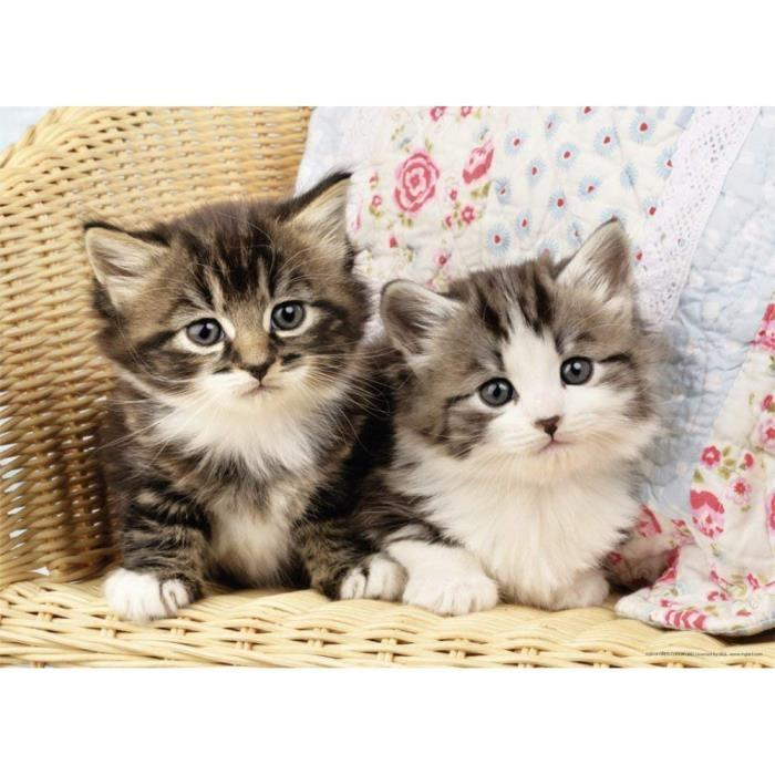 Puzzle-Duo-de-Chatons-Nathan miniature 2