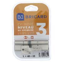 Securite Maison BRICARD ASTRAL 15791 Cylindre 45+55 double entrée laiton nickelé niveau de sécurité 3