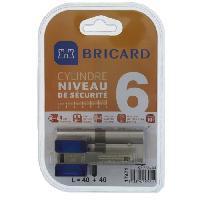 Securite Maison BRICARD CHIFRAL S2 17471 Cylindre 40+40 mm double entrée nickelé niveau de sécurité 6