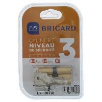 Securite Maison BRICARD MEDIAL 1756 Cylindre 30+30 mm double entrée laiton jaune niveau de sécurité 3