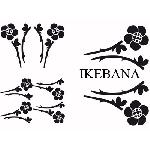 Set Adhesifs -ELEMENT IKEBANA- Noir - PROMO ADN - Car Deco Generique