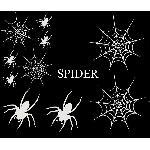 Set Adhesifs -ELEMENT SPIDER- Blanc - PROMO ADN - Car Deco