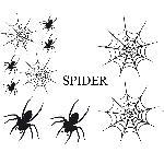 Set Adhesifs -ELEMENT SPIDER- Noir - PROMO ADN - Car Deco