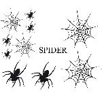 Set Adhesifs -ELEMENT SPIDER- Noir - PROMO ADN - Car Deco Generique