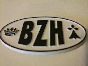 Stickers 3D Adhesif Sticker - Embleme BZH 3D - 4.5x7.4cm - Noir sur fond blanc - Breizh Generique
