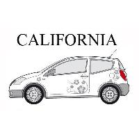 Stickers Grands Formats Set complet Adhesifs -CALIFORNIA- Argent - Taille M - Car Deco Generique