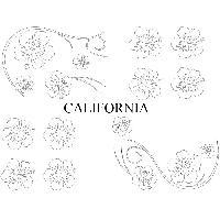Stickers Monocouleurs Set Adhesifs -ELEMENT CALIFORNIA- Blanc - Car Deco Generique