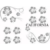 Stickers Monocouleurs Set Adhesifs -ELEMENT CALIFORNIA- Gris - Car Deco Generique
