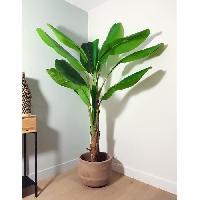 Vase - Coupe - Fleur Bananier artificiel - Hauteur 180 cm - Aucune